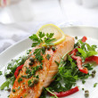 Salmon Dinner - Stock Photo