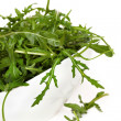 Arugula — Stock Photo