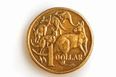 Australian One Dollar Coin — Stock Photo