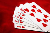 Royal Flush — Stockfoto