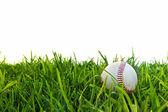 Baseball in Dewy Grass — Stock Photo