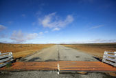 Outback Cattle Grid — Stock Photo