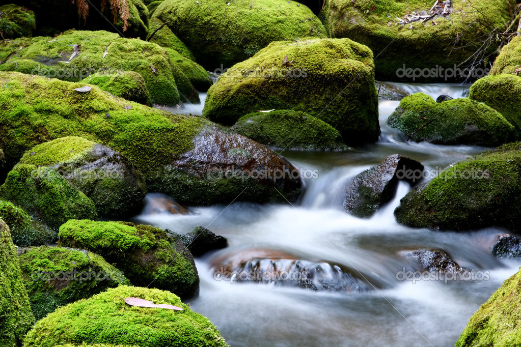 Moss-covered rocks in a river bed with softly flowing veiled water. — Stock Photo #5525268