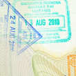 Passport Stamps — Stock Photo #5534113