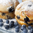 Blueberry Muffins — Stock Photo #5534213