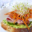 Open Sandwich — Stock Photo