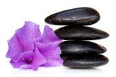 Massage Stones with Hibiscus Flower — Stock Photo