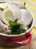 Chicken in Red Crockpot — Stock Photo