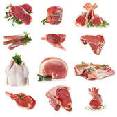 Cuts of Raw Meat — Stock Photo