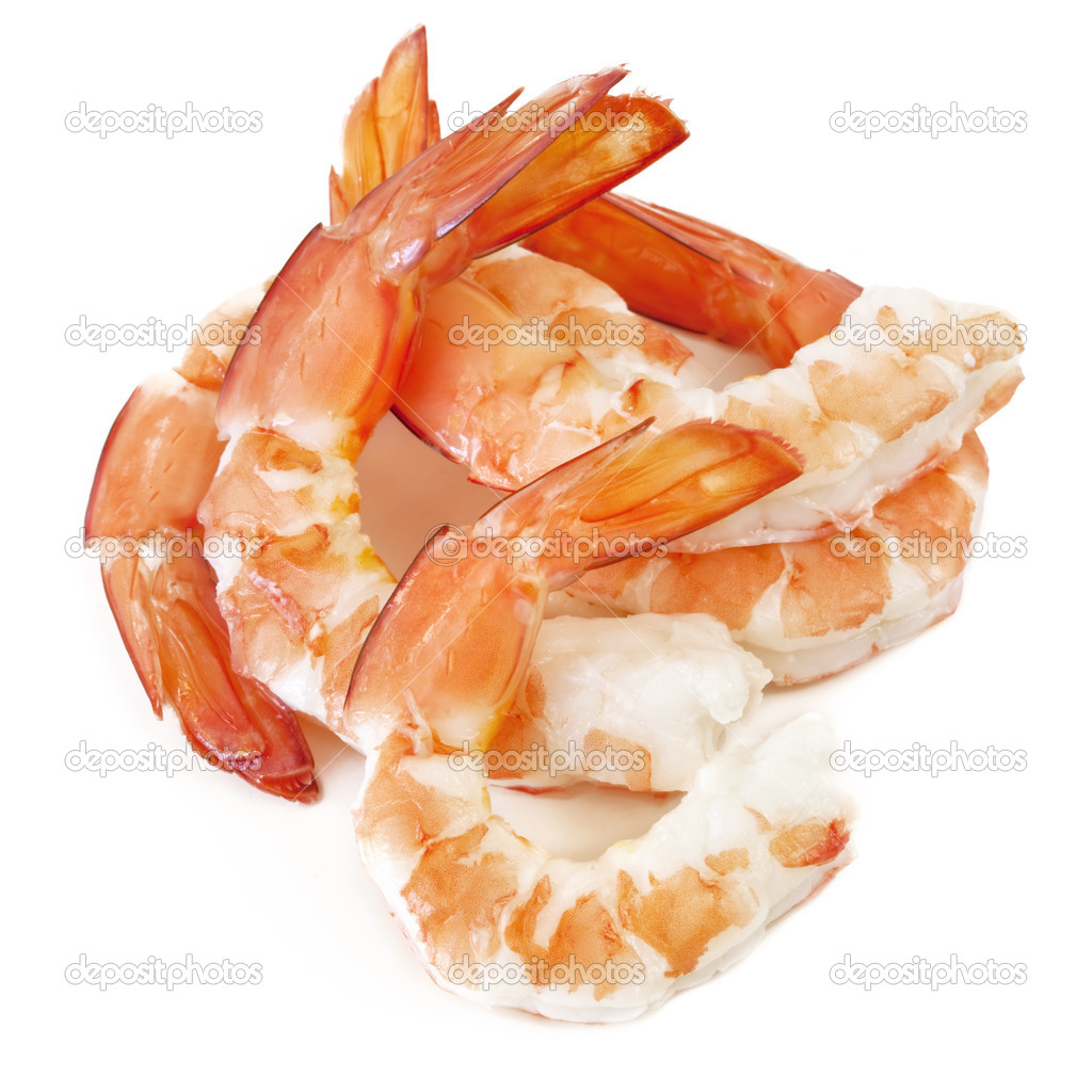 Shrimp — Stock Photo © robynmac #5532170