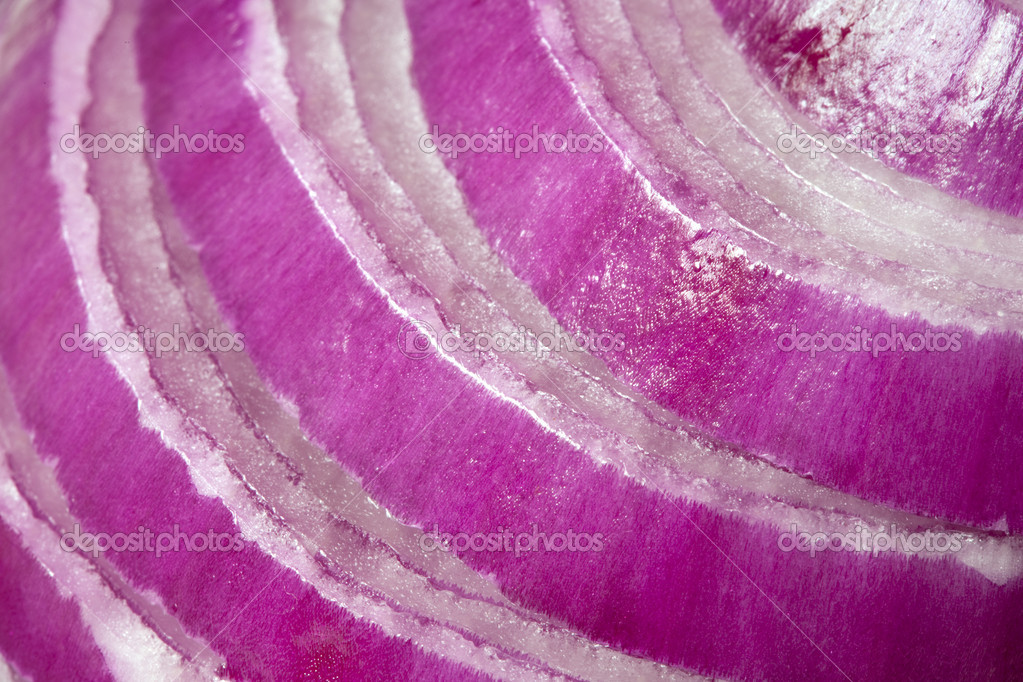 Slices of red onion, in close-up.  Stock Photo #5534318