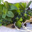 Bouquet Garni — Stock Photo
