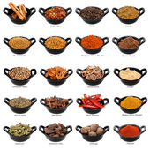 Spice Collection — Stockfoto