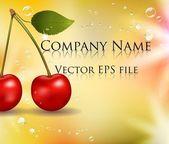 Photo realistic delicious cherry — Stock Vector