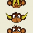Three wise monkeys - Stock Vector