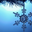 Snowflake — Stock Photo #5644042