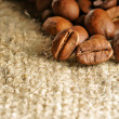 Coffee bean — Stock Photo #5644059