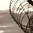 Barbed wire - Foto Stock
