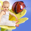 Angel baby on flower - Stock Photo