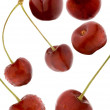 Cherry - Stock Photo