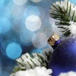 Christmas balls in snow — Stock Photo #5644659