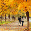 Couple in autumn park — ストック写真