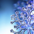 Snowflake — Stock Photo #5646246