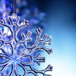Snowflake — Stock Photo #5646255