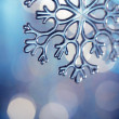 Snowflake — Stock Photo #5646266