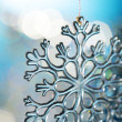 Snowflake — Stock Photo #5646270