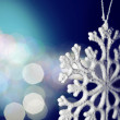 Snowflake — Stock Photo #5646272