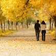 Young couple walking together in Autumn — Stock Photo #5646643