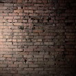 Brick wall — Stock Photo #5646645