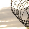 Barbed wire — Stock Photo #5646868