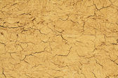 Cracked earth background — Stock Photo