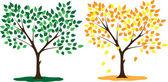 Mevsim yaz ve sonbahar ağacı — Stok Vektör