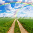Rainbow fields - Stock Photo