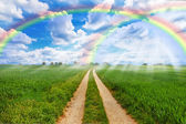 Rainbow fields — Stock Photo
