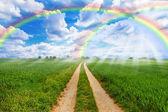 Rainbow fields — Stock Photo