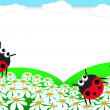 Ladybug scrapbook — Stock Photo #5503969
