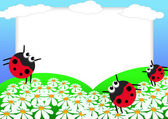 Ladybug scrapbook — Stock Photo