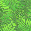 Stock Photo: Jungle background