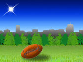 American football in the park — Stock Photo