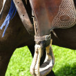 Stock Photo: Western stirrup close-up