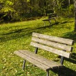 Empty park bench — Stock Photo #6383050