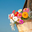 Brightly colored flowers in a wooden bucket — Stock Photo #5539426