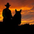Silhouette of a horse and a rider in a cowboy hat — Stock Photo #5539721