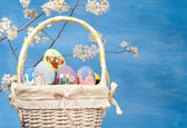 Basketful of colorful Easter eggs on blue background — 图库照片