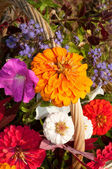 Close up image of basketful of beautiful colorful flowers — Stock Photo