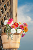 Basketful of bright flowers against rustic wood — Stock Photo